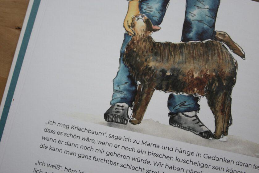 """Detailaufnahme einer Illustration aus """"Der Mönkel und der Trillfox im Moor"""" der Katze Kriechbaum."""