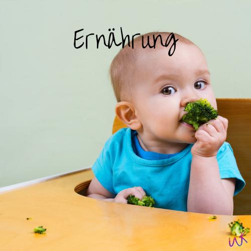 """Ein Baby sitzt in einem Hochstuhl und isst Brokkoli. Auf dem Bild steht """"Ernährung"""". Beikost Beratung und Workshop in Oldenburg"""